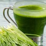 Хлорофилл — зеленая кровь растений и лучшая основа для НАПИТКА КРАСОТЫ
