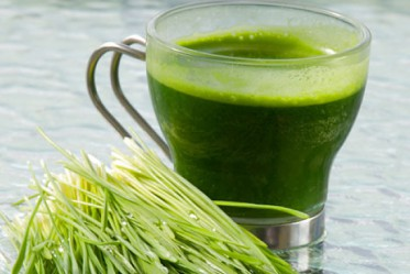 liquid chlorophyll iherb