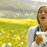 Добавки от аллергии для взрослых. Схема приема