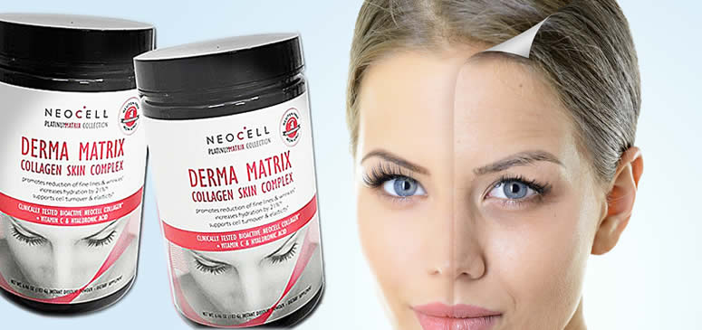 collagen-or-amino-acids