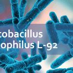 Пробиотики от аллергии — штамм Lactobacillus acidophilus L-92